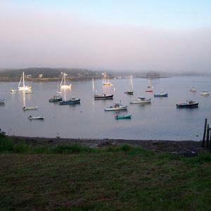 Burnt Coat Harbor in a light fog