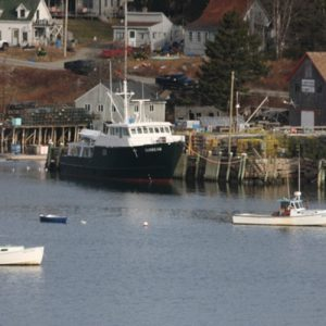 Sunbeam at the dock <i>Photo Credit: Ann Marie Maguire</i>