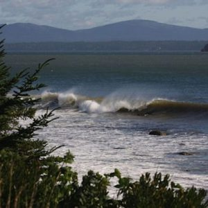 Surf on the east side <i>Photo Credit Ann Marie Maguire</i>