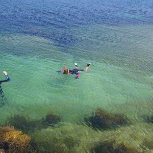 Ocean swimming is possible!